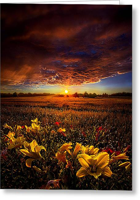 Geographic Greeting Cards - Drifting Greeting Card by Phil Koch