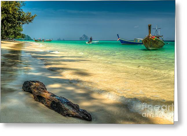 Asia Digital Greeting Cards - Driftwood Greeting Card by Adrian Evans