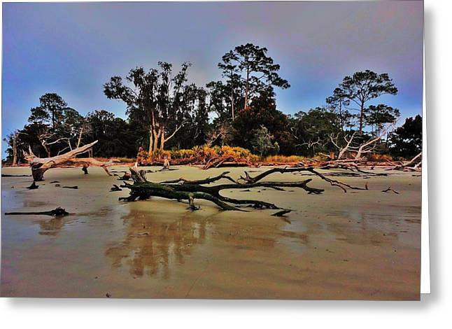 Driftwood Beach Greeting Cards - Driftwood Beach Greeting Card by Benjamin Yeager