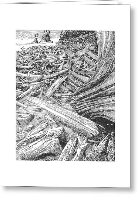 North Sea Drawings Greeting Cards - Driftwood Beach Cape Flattery Greeting Card by Jack Pumphrey