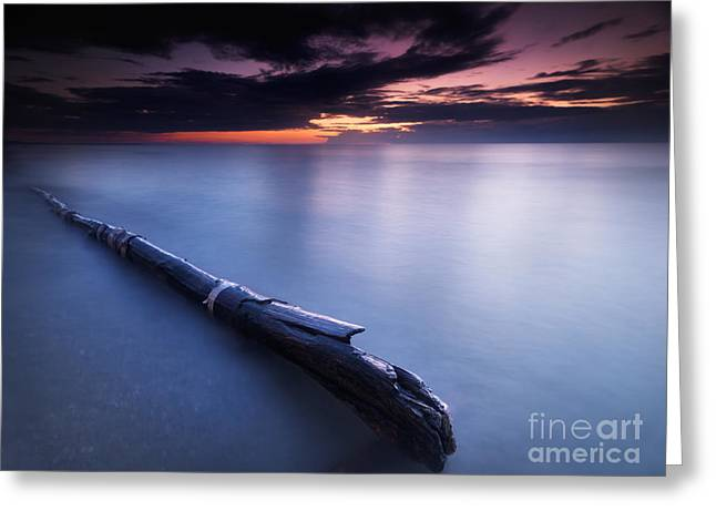 Beach Scenery Greeting Cards - Driftwood in dramatic sunset scenery at lake Huron Grand Bend Greeting Card by Oleksiy Maksymenko