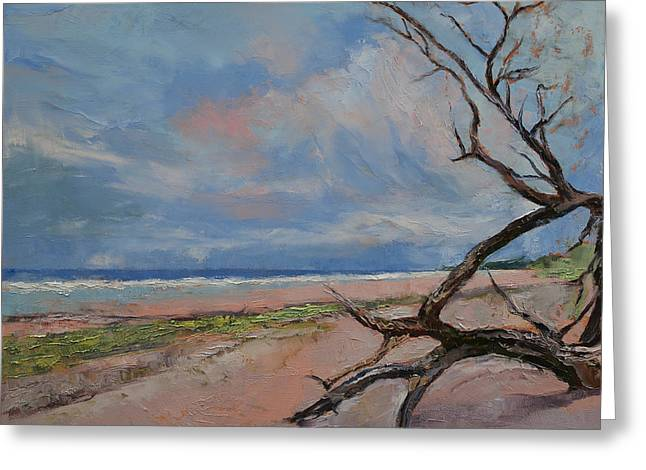 Driftwood Beach Greeting Cards - Driftwood Greeting Card by Michael Creese