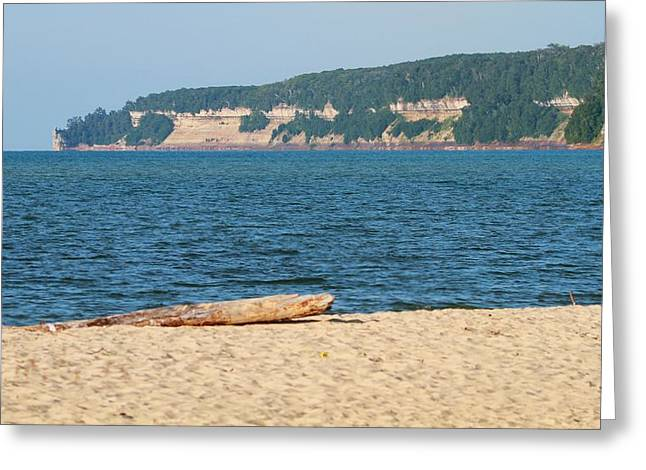 Beach Driftwood Greeting Cards - Driftwood On The Beach Greeting Card by Dan Sproul
