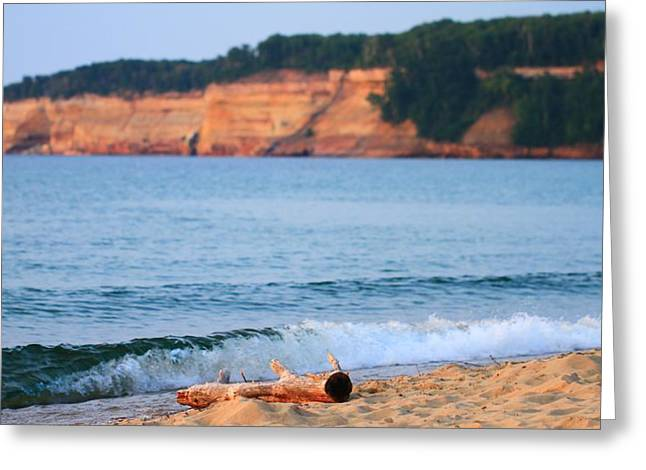 Beach Driftwood Greeting Cards - Driftwood Pictured Rocks Lakeshore Greeting Card by Dan Sproul