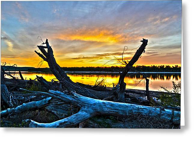 Amazing Sunset Mixed Media Greeting Cards - Driftwood Sunset Greeting Card by Brian Metz