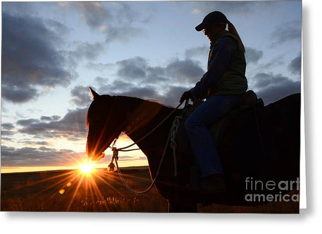 Horse And Riders Greeting Cards - Drinking In The Light Greeting Card by Bob Christopher