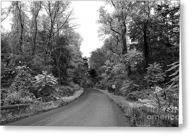 Drive Through Greeting Cards - Drive Through the Skylands Greeting Card by John Rizzuto