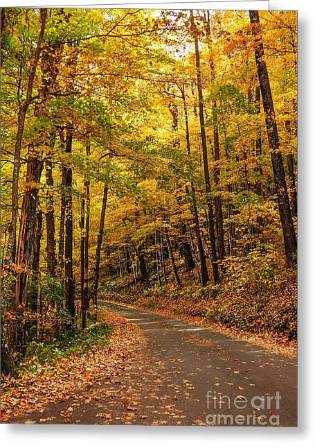 Roaring Fork Road Photographs Greeting Cards - Driving Fall Mountain Roads. Greeting Card by Debbie Green
