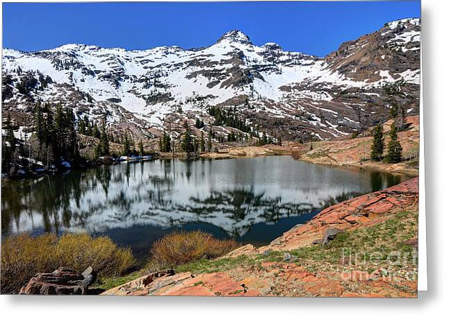 Dromedary Greeting Cards - Dromedary Peak Reflected in Lake Florence Greeting Card by Gary Whitton
