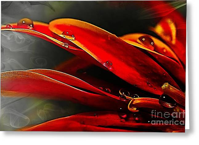 Fineartprint Greeting Cards - Drop Dead Red Greeting Card by Wobblymol Davis