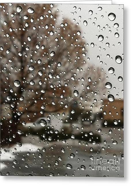 Outlook Greeting Cards - Droplets With a View Greeting Card by Barbara Chase