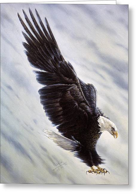 Eagle Feathers Greeting Cards - Dropping In Greeting Card by Gregory Perillo