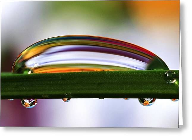 Dewdrops Greeting Cards - Drops of Abstract IV Greeting Card by Gary Yost