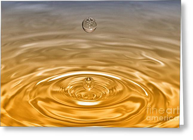 Artist Photographs Greeting Cards - Drops Greeting Card by Veikko Suikkanen