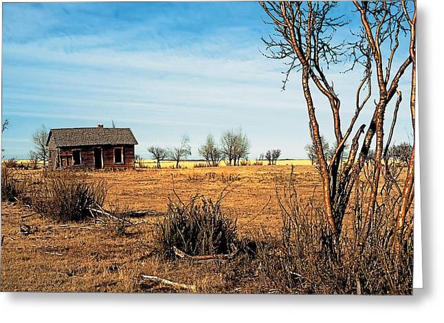 House Greeting Cards - Drought 2 Greeting Card by Terry Reynoldson