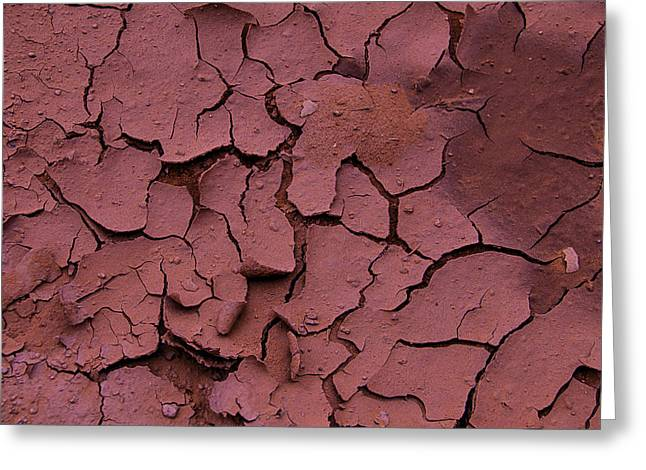 Warm Tones Photographs Greeting Cards - Dry Cracked Earth Greeting Card by Garry Gay
