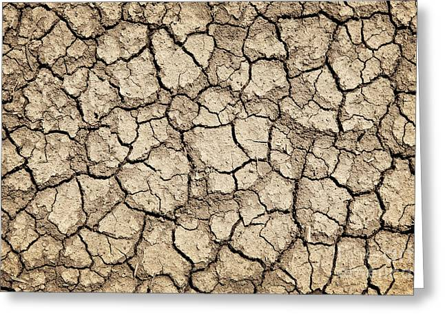 Drought Greeting Cards - Dry earth Greeting Card by Elena Elisseeva