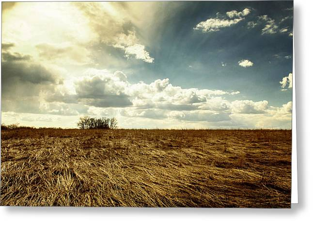 Open Field Greeting Cards - Dry Fields at Busch Greeting Card by Bill Tiepelman