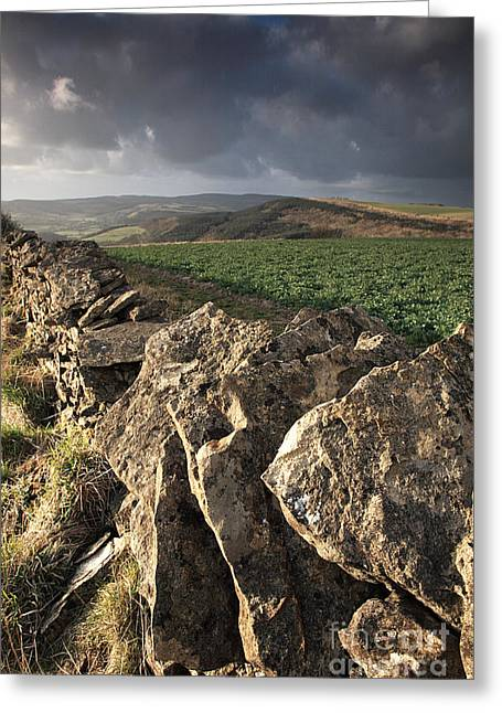 Sutton Farm Greeting Cards - Dry stone wall view Greeting Card by Deborah Benbrook