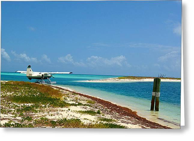 Dry Tortugas  Greeting Card by Rasko Aksentijevic