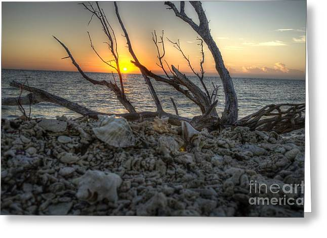 Dry Tortugas Sunrise Greeting Card by Jason Barr