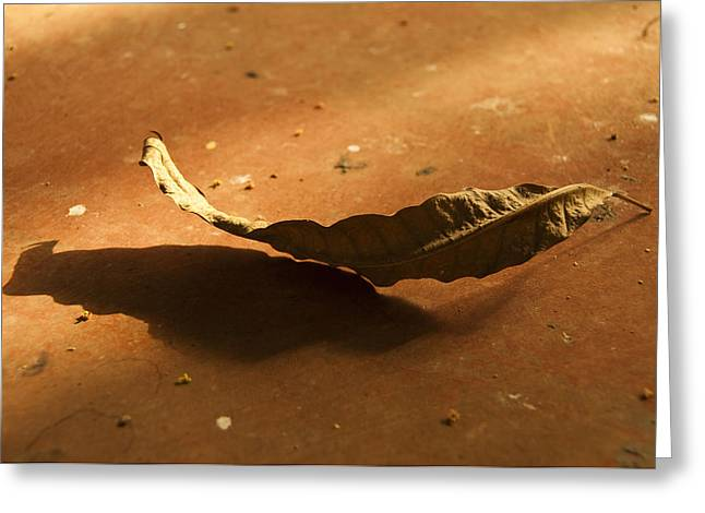 Dry Tree Leaf On A Rusty Steel Sheet Greeting Card by Dutourdumonde Photography