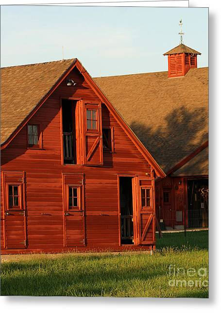 Gingrich Photo Greeting Cards - Dual Barns-3811 Greeting Card by Gary Gingrich Galleries