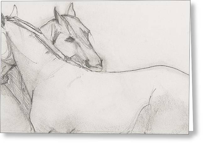 Quarter Horses Greeting Cards - Dual Massage Sketch Greeting Card by Jani Freimann