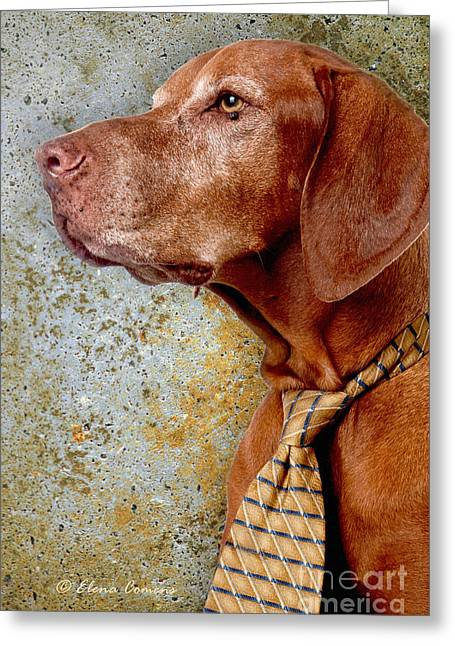 Hungarian Pointer Greeting Cards - Dubies Portrait Greeting Card by Starlite Studio