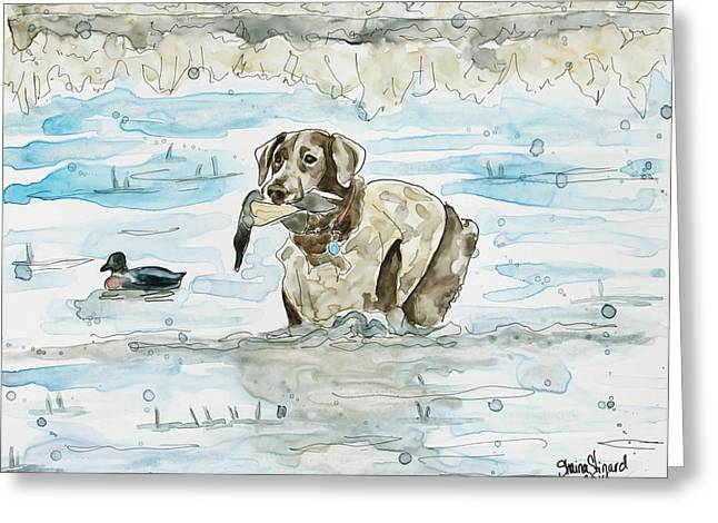 Chocolate Lab Greeting Cards - Duck Hunter Greeting Card by Shaina Stinard
