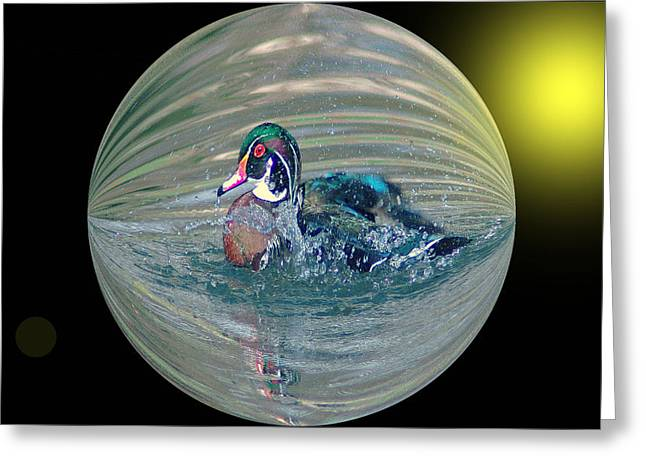 Duck In A Bubble  Greeting Card by Jeff Swan