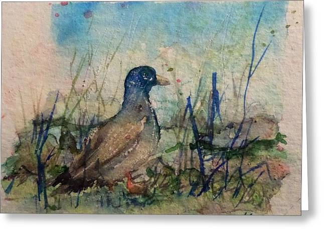 Bird Greetingcards Greeting Cards - Duck Greeting Card by Liz Naepflin
