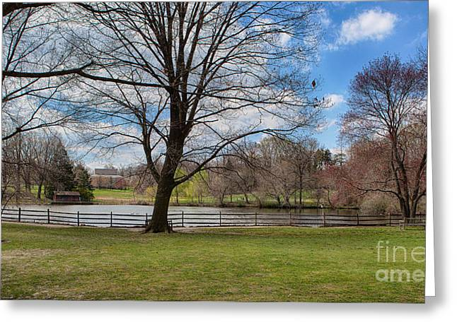 Duck Pond Haverford College Greeting Card by Kay Pickens