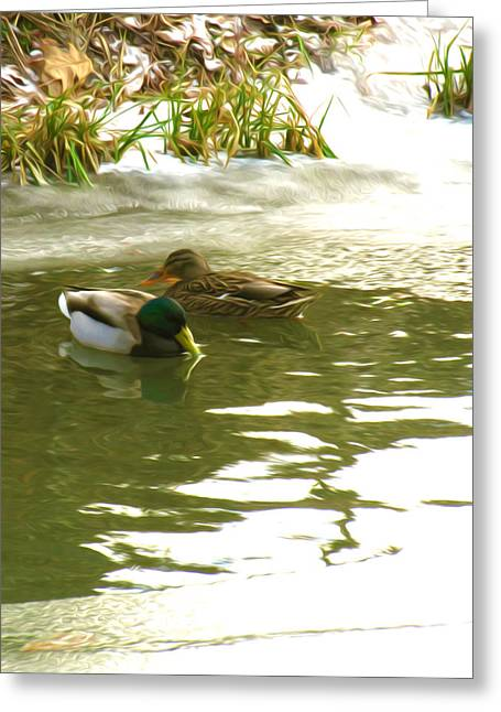 Styria Greeting Cards - Duck swimming in a frozen lake Greeting Card by Lanjee Chee