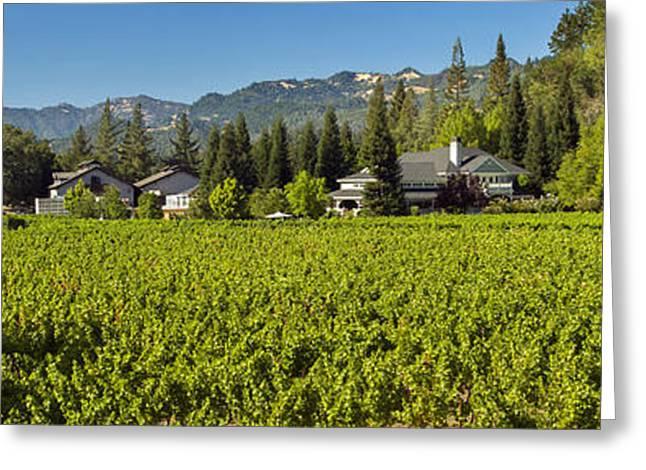 Wine-glass Greeting Cards - Duckhorn Vineyard Greeting Card by Jon Neidert