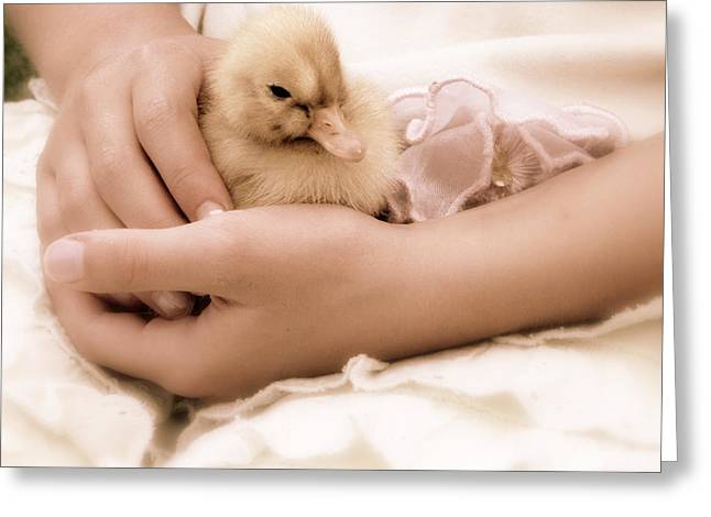 For Her Greeting Cards - Duckling Awake Greeting Card by Brooke Ryan