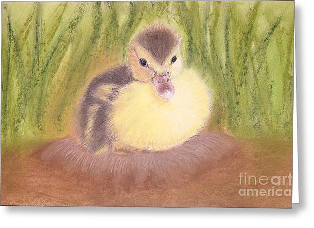Ducklings Pastels Greeting Cards - Duckling Greeting Card by Popokino Art