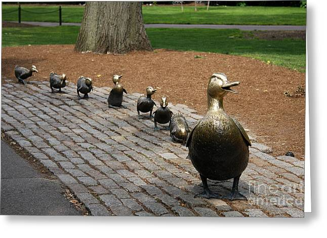 Ducklings Greeting Card by Christiane Schulze Art And Photography
