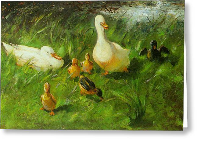 Ducklings Digital Greeting Cards - Ducks And Ducklings On A Riverbank Greeting Card by Franz Helfferich