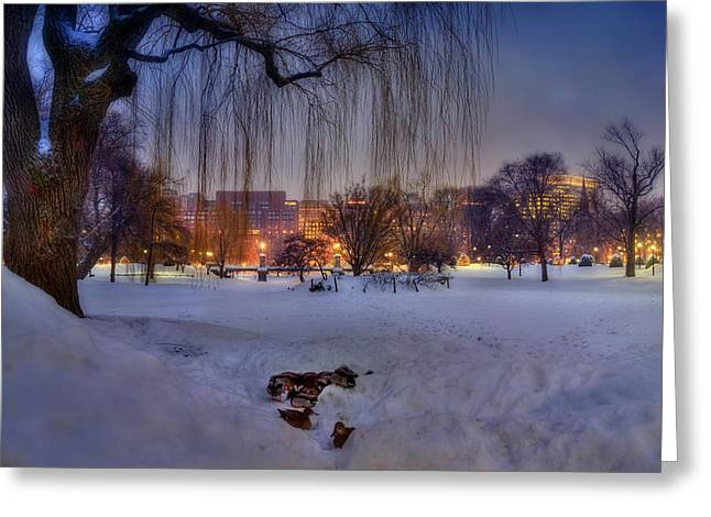 New England Snow Scene Greeting Cards - Ducks in Boston Public Garden in the Snow Greeting Card by Joann Vitali