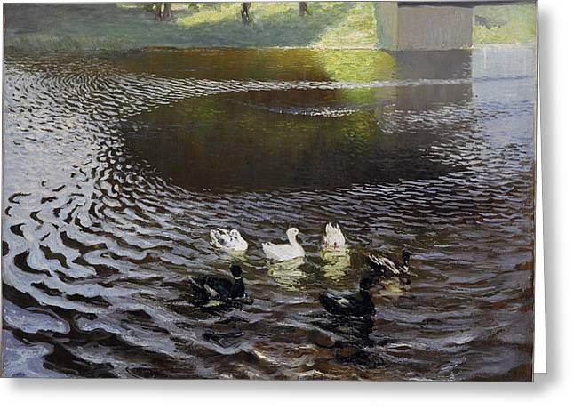 Johan Greeting Cards - Ducks Greeting Card by Johans Valters