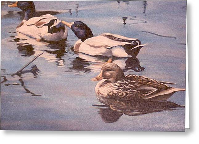 Donna Tucker Greeting Cards - Ducks on the Cachuma Greeting Card by Donna Tucker