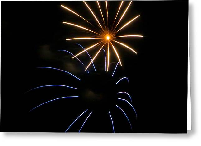 Pyrotechnics Greeting Cards - Due Fiori Greeting Card by Glenn DiPaola