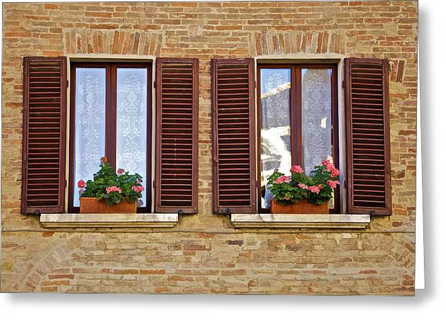 Lace Curtains Greeting Cards - Dueling Windows of Tuscany Greeting Card by David Letts