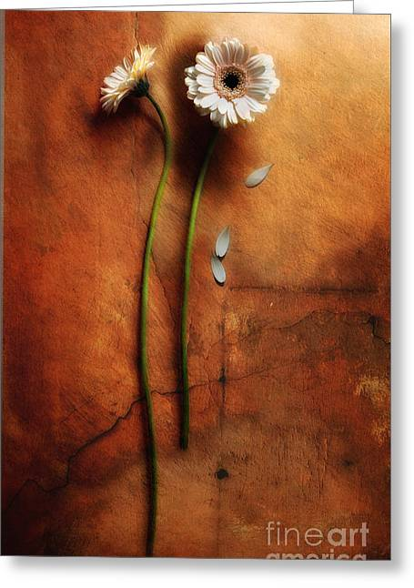 Recently Sold -  - Loose Greeting Cards - Duet Greeting Card by Jaroslaw Blaminsky