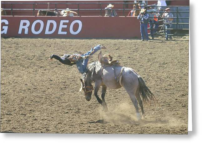 Bucking Horses Greeting Cards - Dumped Greeting Card by Jeff  Swan