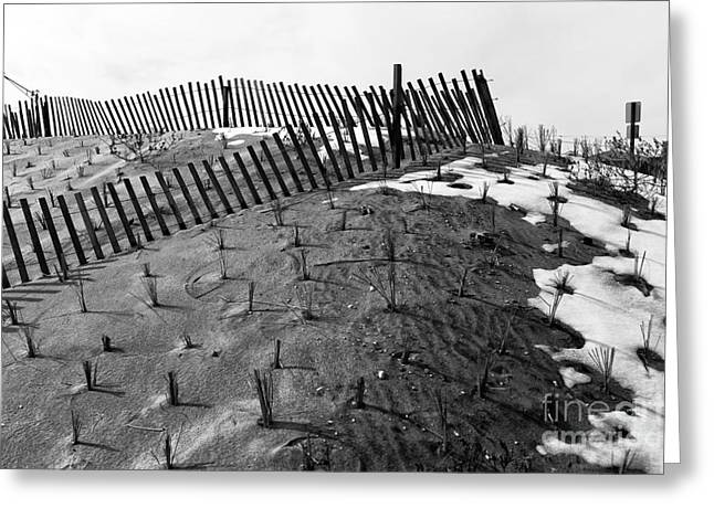 Sand Patterns Greeting Cards - Dune Angles mono Greeting Card by John Rizzuto