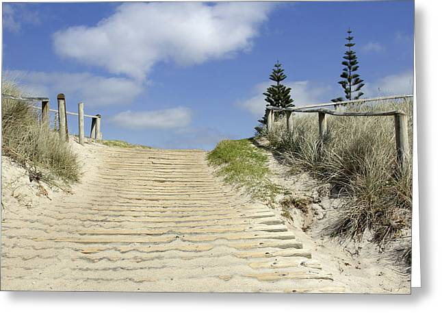 Beach Photograph Greeting Cards - Dune boardwalk Greeting Card by Les Cunliffe