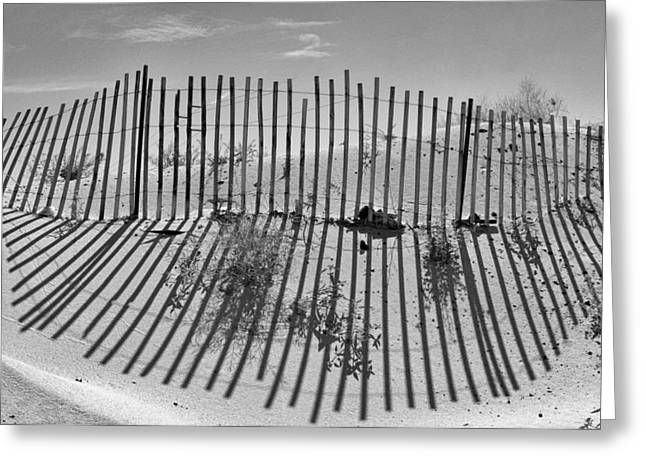 Decorative Greeting Cards - Dune Builder BW Greeting Card by Scott Campbell