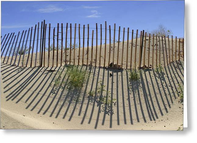 Desert Greeting Cards - Dune Builder Greeting Card by Scott Campbell